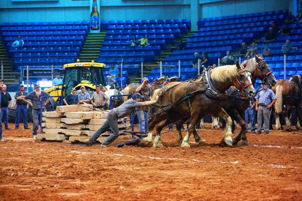 OHW Horse Pulls