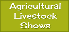 btn-livestockshows