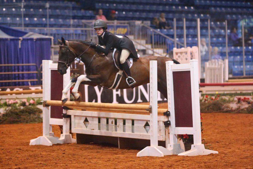 2017 Old Home Week Light Horse Show