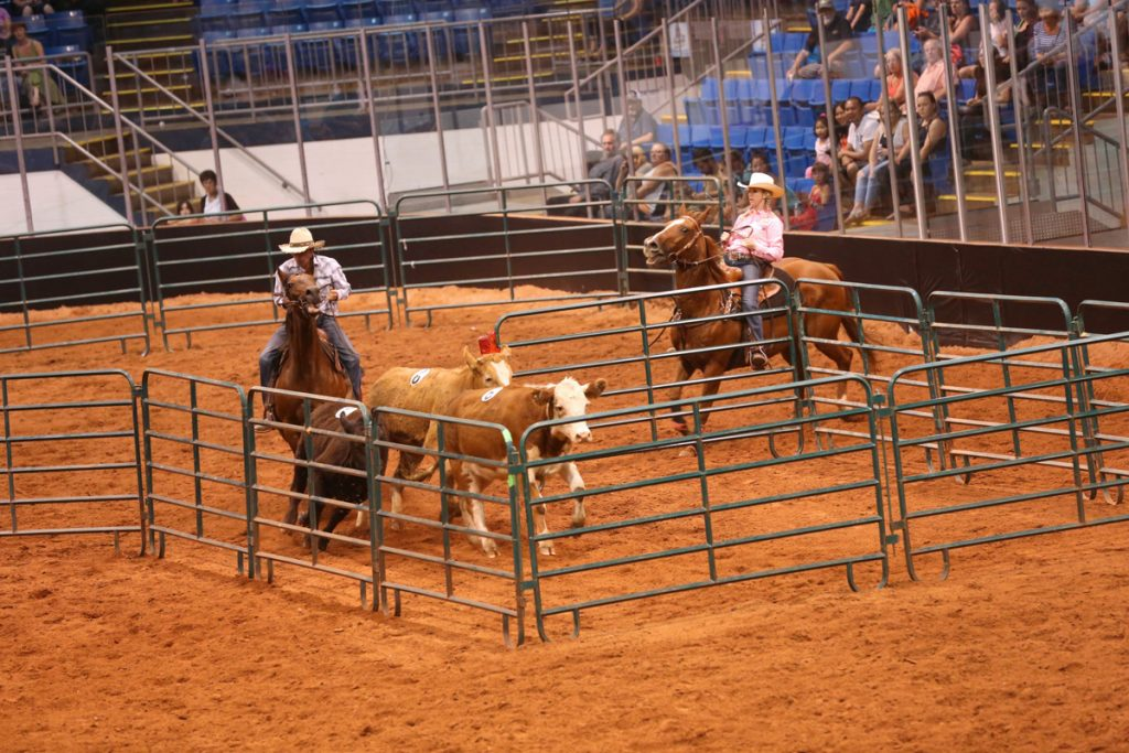 2017 Old Home Week Poles, Penning & Barrels