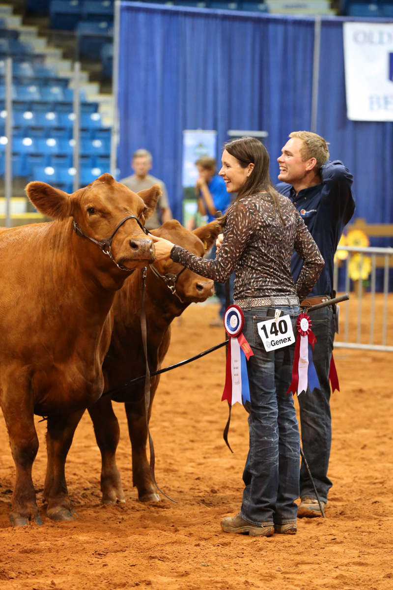 2017 ABP Old Home Week Beef Cattle Show