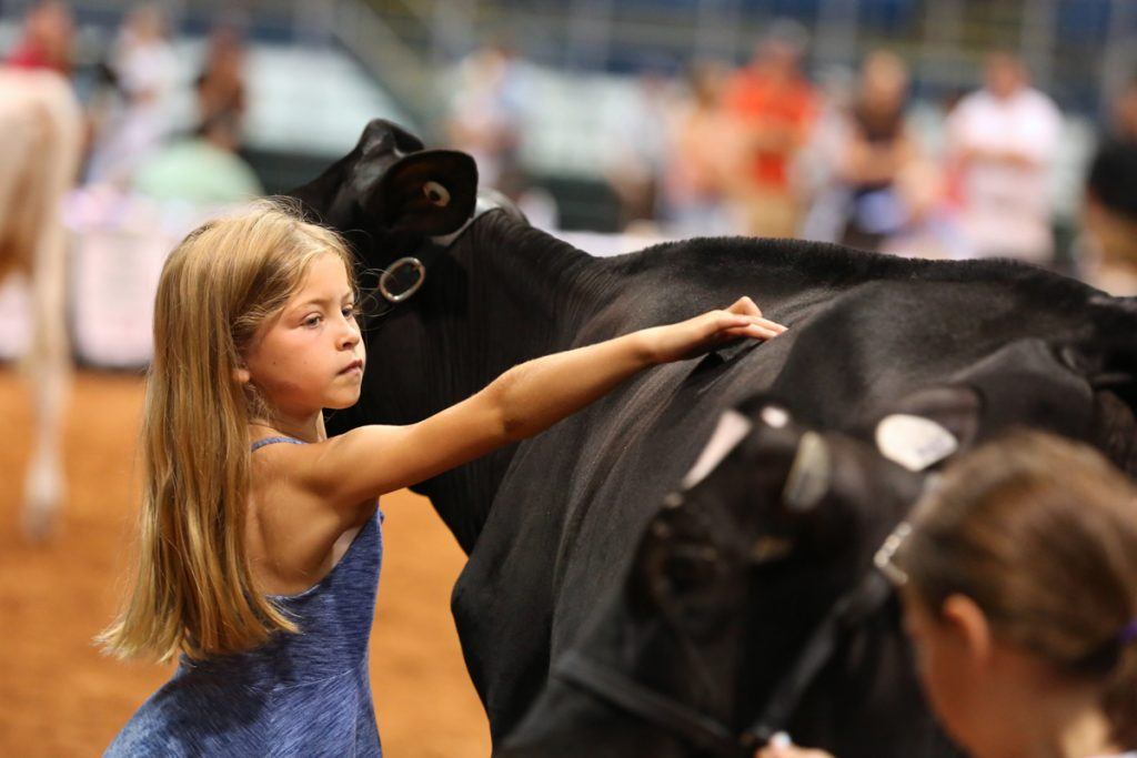 2017 Old Home Dairy Show